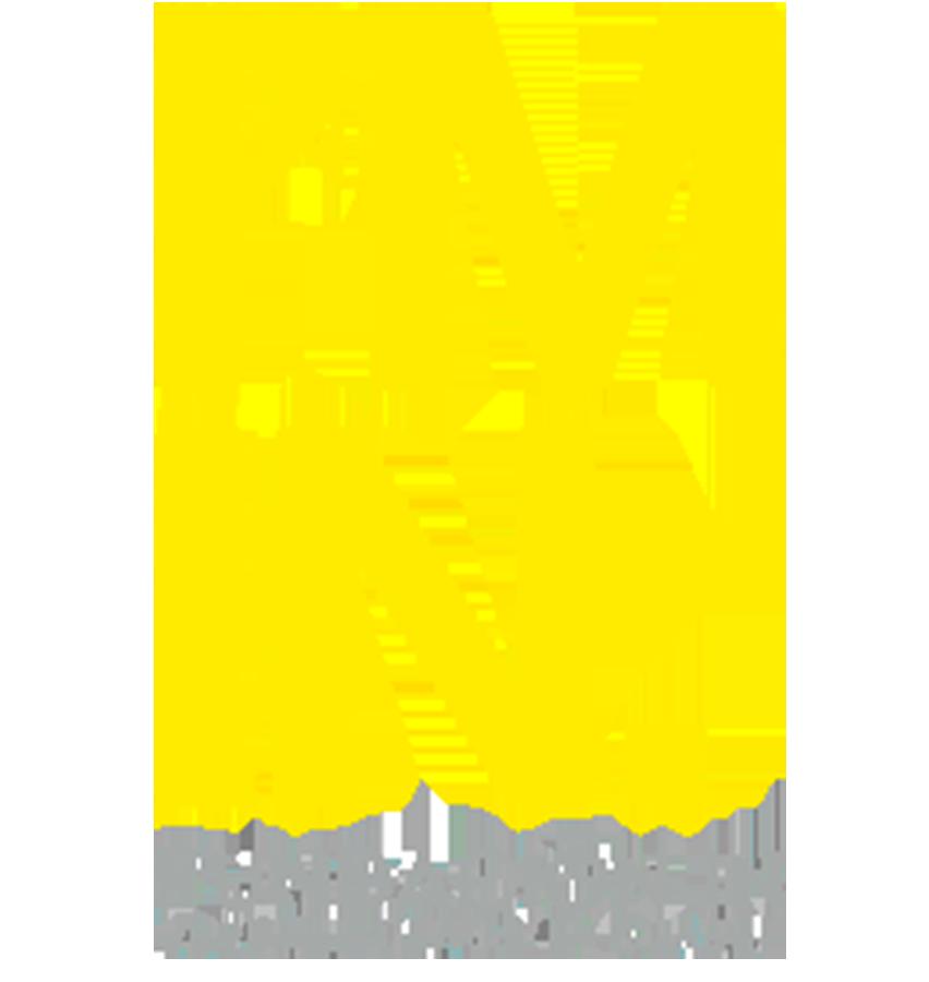 Fundación IN